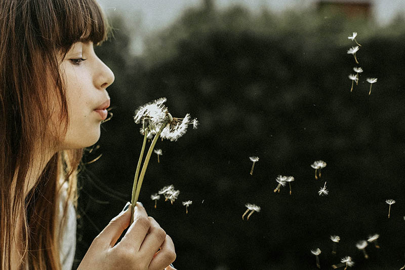 woman blowing on a dandelion -- deep breathing -- how to de-stress at work